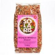 Solaris Belsug de mirodenii picant condiment granulat 500g
