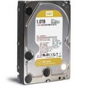 Western Digital Hard disk Gold 1TB WD1005FBYZ 0130735