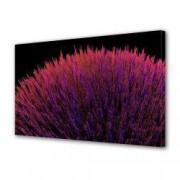 Tablou Canvas Premium Abstract Multicolor Buchet De Flori Decoratiuni Moderne pentru Casa 80 x 160 cm