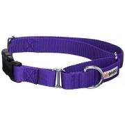 """GoGo Pet Products GoGo Martingale Collares Ajustables, Púrpura, Large (1"""" Web Width)"""