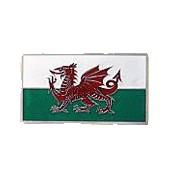 Hebilla dragon Gales