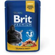 Brit Premium Cat Salmon & Trout 100g alutasakos