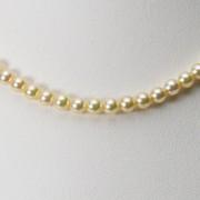 4.5mm ベビーパール アコヤ真珠 パール ネックレス (ナチュラルゴールド)
