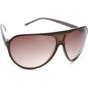 Guess Aviator Sunglasses(Brown)