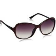Image Oval Sunglasses(Violet)