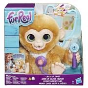 Furreal cu maimutica Zandi la controlul medical