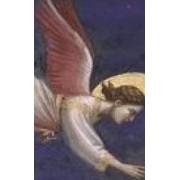 Cum actioneaza ingerul in corpul nostru astral - Rudolf Steiner