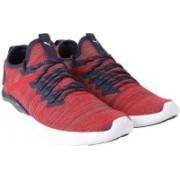 Puma IGNITE Flash evoKNIT Sneakers For Men(Red)