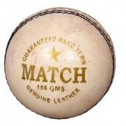 Port Leather Cricket Ball