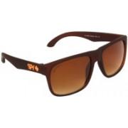 David Martin Wayfarer Sunglasses(Brown)