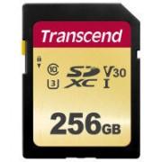 SDXC 256GB UHS-I U3 (R95/W60)