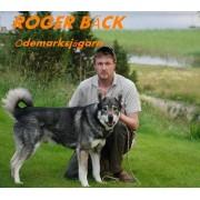 Roger bäck Ödemarksjägar´n (Musik cd)