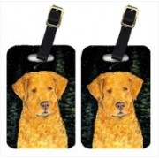 Caroline's Treasures SS8487BT Starry Night Chesapeake Bay Retriever Luggage Tags Luggage Tag(Multicolor)