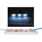 NTR LEDM03CW Piranha 3xLED modul 12V 6000K hideg-fehér 0,24W