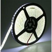 Flexible LED Strip Lights 5050 LEDs Warm White Waterproof LED Light Strip 12V DC 16.4ft/5m LED Tape for Gardens/Homes/Kitchen/Cars/Bar