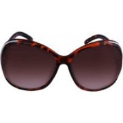 D&G Over-sized Sunglasses(Brown)