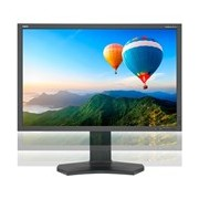 "NEC Display MultiSync PA302W-BK 75.7 cm (29.8"") LED LCD Monitor - 16:10 - 6 ms"