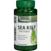 Alga Marina (Sea Kelp) 90tab Vitaking