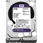 WD SATA 2 TB Surveillance Systems Internal Hard Disk Drive (WD20PURZ)