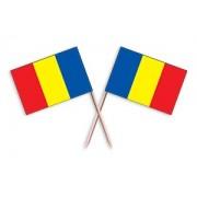 Scobitoare Stegutet Romania