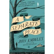 A Separate Peace, Paperback/John Knowles