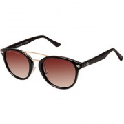 David Blake Brown Gradient Polarized UV Protected Round Sunglass