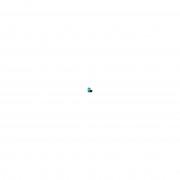Smartphone ASUS Zenfone Go Live Dual Chip Android Tela 5.5 Qualcomm Snapdragon MSM8928 16GB 4G Câmera 13MP - Preto