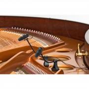 DPA d:vote CORE 4099P Piano Set