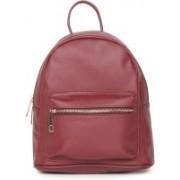 Dressberry DB Backpacks 23 L Backpack(Maroon)