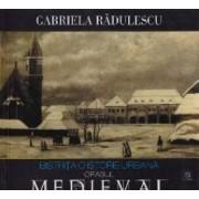 Bistrita o istorie medievala - Orasul Medieval - Gabriela Radulescu