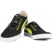 Puma 917 Lo DP Men Low Ankle Sneakers For Men(Black)