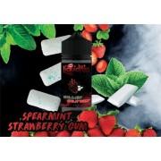 Spearmint Strawberry Gum LiquidKiss 100ml 2mg