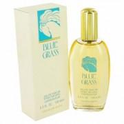 Blue Grass For Women By Elizabeth Arden Eau De Parfum Spray 3.3 Oz