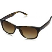 Fastrack Oval Sunglasses(Brown)