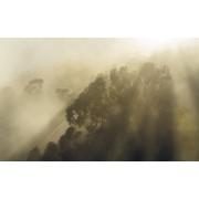 Komar Misty Mountain Vlies Fotobehang 400x250cm 4-banen