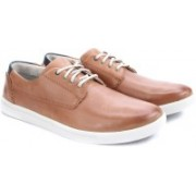 Clarks Newood Fly Tan Leather Sneakers For Men(Tan)