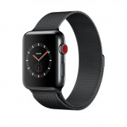 Умные часы Apple Watch Series 3 Cellular 38mm Stainless Steel Case with Milanese Loop MR1H2 Black (Черный)