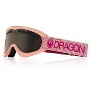 Dragon Alliance DR DXS 6 スキーゴーグル 272
