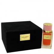 Dolce & Gabbana Velvet Love Eau De Parfum Spray By Dolce & Gabbana 1.6 oz Eau De Parfum Spray