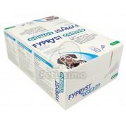 Fypryst Combo soluție spot on pentru câini cu talie mare 10 x 2,68 ml