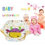 EW pantalone de la ropa interior de lo pañale de lo niño (de gran tamaño de la pantorrilla)-Multicolor