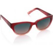 Skechers Oval Sunglasses(Blue)