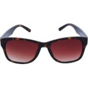 Fastrack Retro Square Sunglasses(Brown)