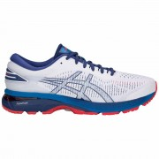 Asics Zapatillas running Asics Gel Kayano 25