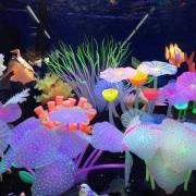 Onloon Las Setas Delicada Artificial Lotus Hoja De La Planta Del Acuario Por Un Tanque De Peces Decoración Adornos(transparente)