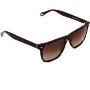Fossil Wayfarer Sunglasses(Brown)