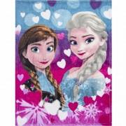 Disney Fleece kleedje Frozen voor meisjes 90 x 120 cm