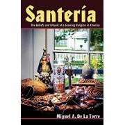 Santeria: The Beliefs and Rituals of a Growing Religion in America, Paperback/Miguel A. de la Torre