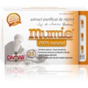 Extract purificat de rasina mumie 100% natural-capsule 60cps DAMAR