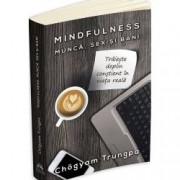 Mindfulness Nasterea constienta